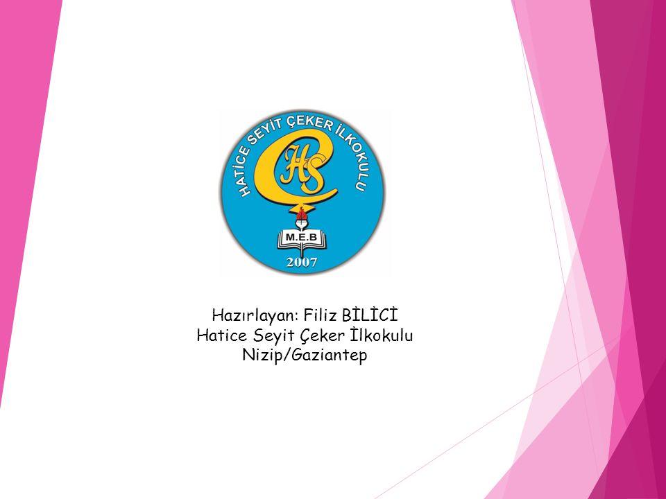 Hazırlayan: Filiz BİLİCİ Hatice Seyit Çeker İlkokulu Nizip/Gaziantep