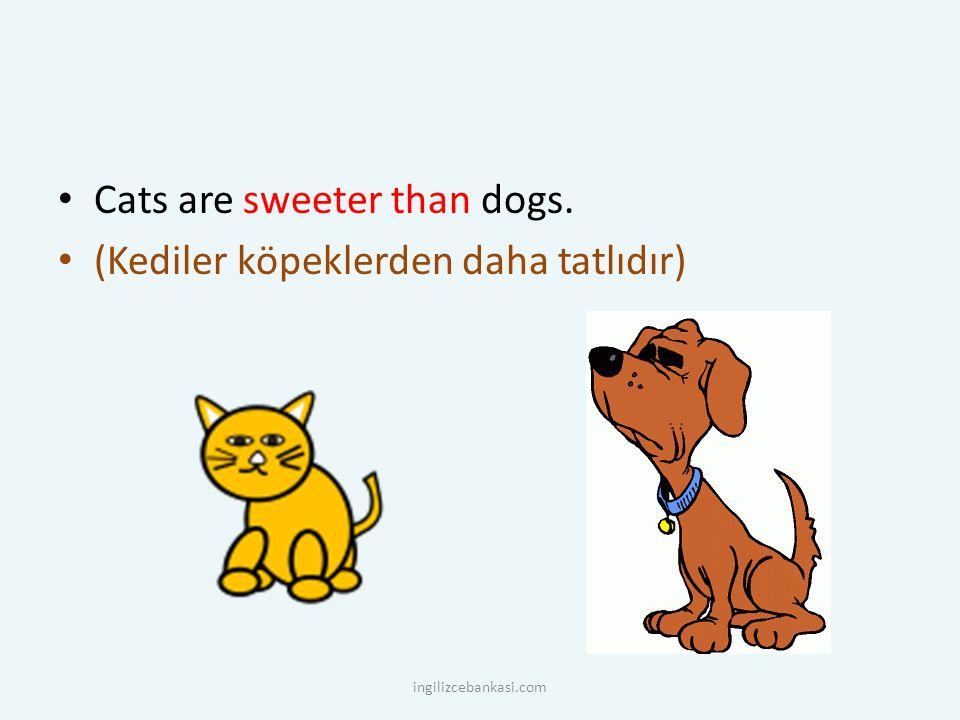 Cats are sweeter than dogs. (Kediler köpeklerden daha tatlıdır) ingilizcebankasi.com