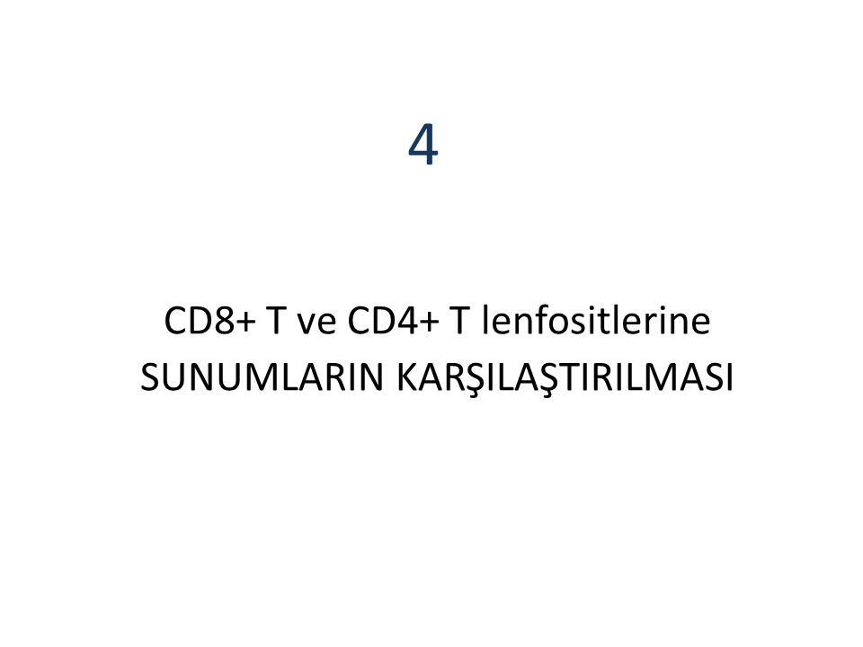 CD8+ T ve CD4+ T lenfositlerine SUNUMLARIN KARŞILAŞTIRILMASI 4