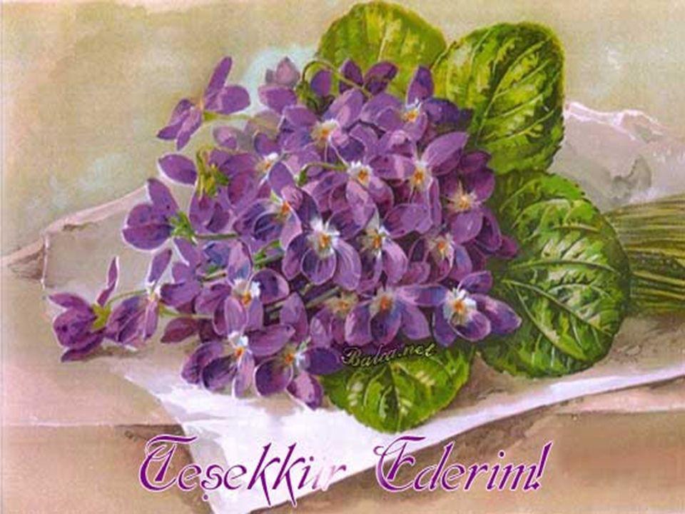 Bir teşekkür gözde çiçek açtırır.Bir teşekkür alır gider bütün yorgunluğu.