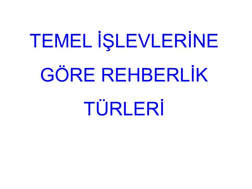 TEMEL İŞLEVLERİNE GÖRE REHBERLİK TÜRLERİ