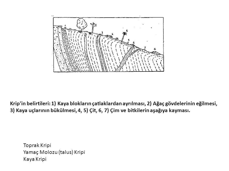 Krip'in belirtileri: 1) Kaya blokların çatlaklardan ayrılması, 2) Ağaç gövdelerinin eğilmesi, 3) Kaya uçlarının bükülmesi, 4, 5) Çit, 6, 7) Çim ve bit