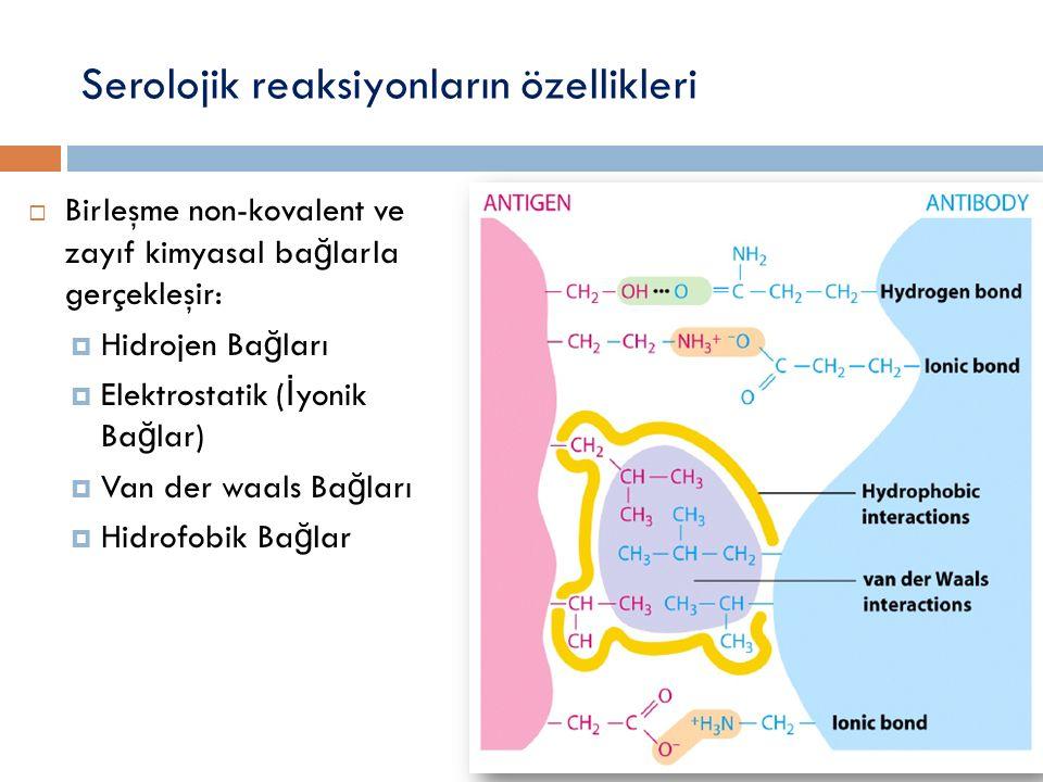 Serolojik reaksiyonların özellikleri  Birleşme non-kovalent ve zayıf kimyasal ba ğ larla gerçekleşir:  Hidrojen Ba ğ ları  Elektrostatik ( İ yonik Ba ğ lar)  Van der waals Ba ğ ları  Hidrofobik Ba ğ lar