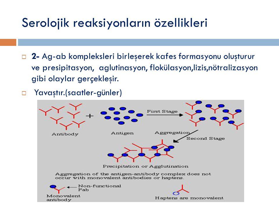 Serolojik reaksiyonların özellikleri  2- Ag-ab kompleksleri birleşerek kafes formasyonu oluşturur ve presipitasyon, aglutinasyon, flokülasyon,lizis,nötralizasyon gibi olaylar gerçekleşir.
