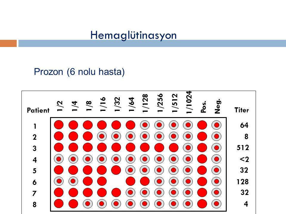 Hemaglütinasyon 1/2 1/4 1/8 1/16 1/32 1/64 1/128 1/256 1/512 1/1024 Pos.
