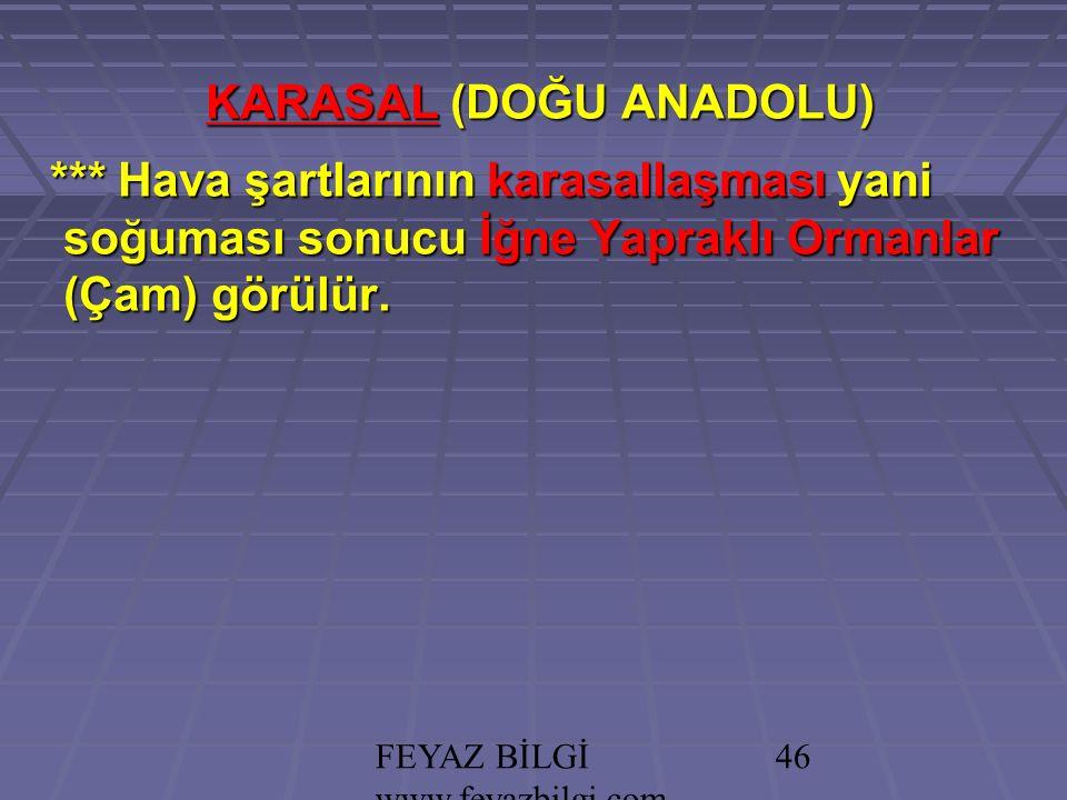 FEYAZ BİLGİ www.feyazbilgi.com 45 KARASAL (DOĞU ANADOLU) **Yazları serindir.