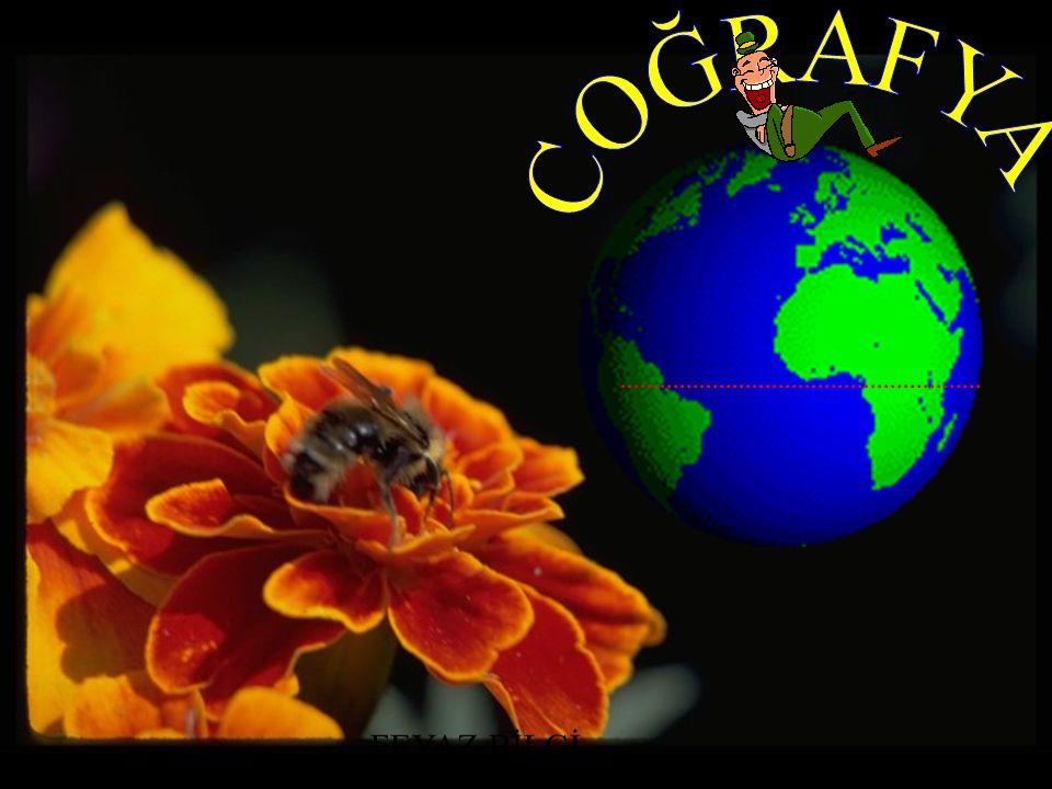 Ekvatoral İklim Ekvator çevresinde Amazon ve Kongo Havzaları'nda.