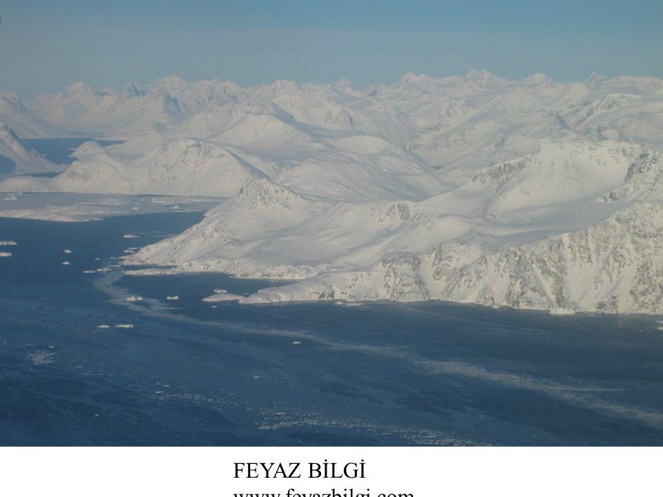 Kutup İklimi Antarktika ve Grönland'da görülür. Sıcaklıklar her zaman 0°C nin altındadır.