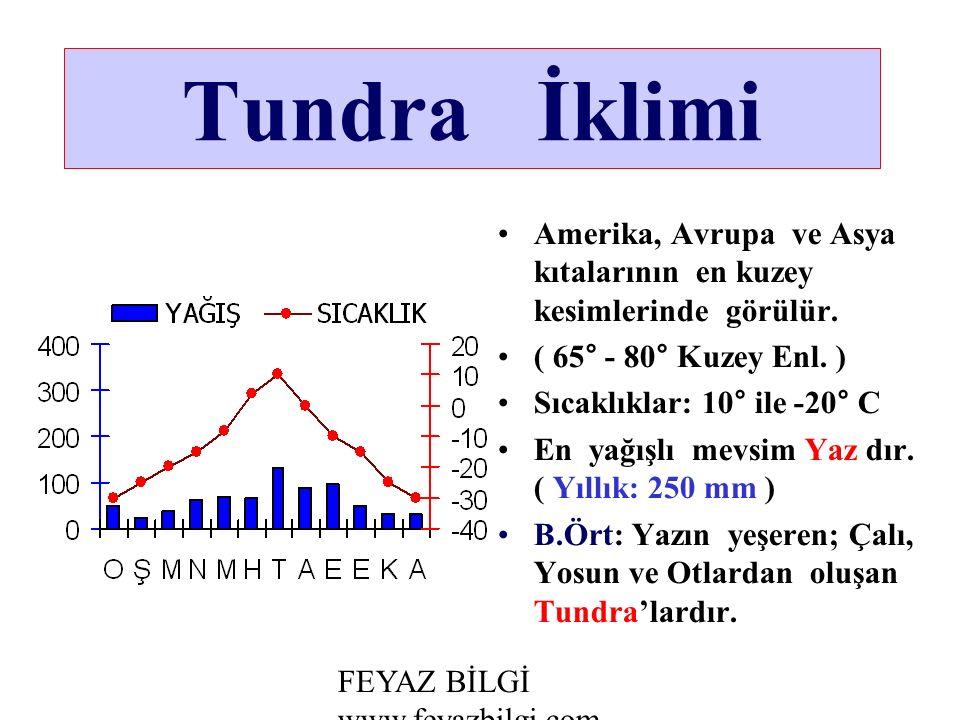 Tundra İklimi Amerika, Avrupa ve Asya kıtalarının en kuzey kesimlerinde görülür.
