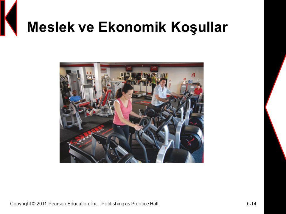 Meslek ve Ekonomik Koşullar Copyright © 2011 Pearson Education, Inc.