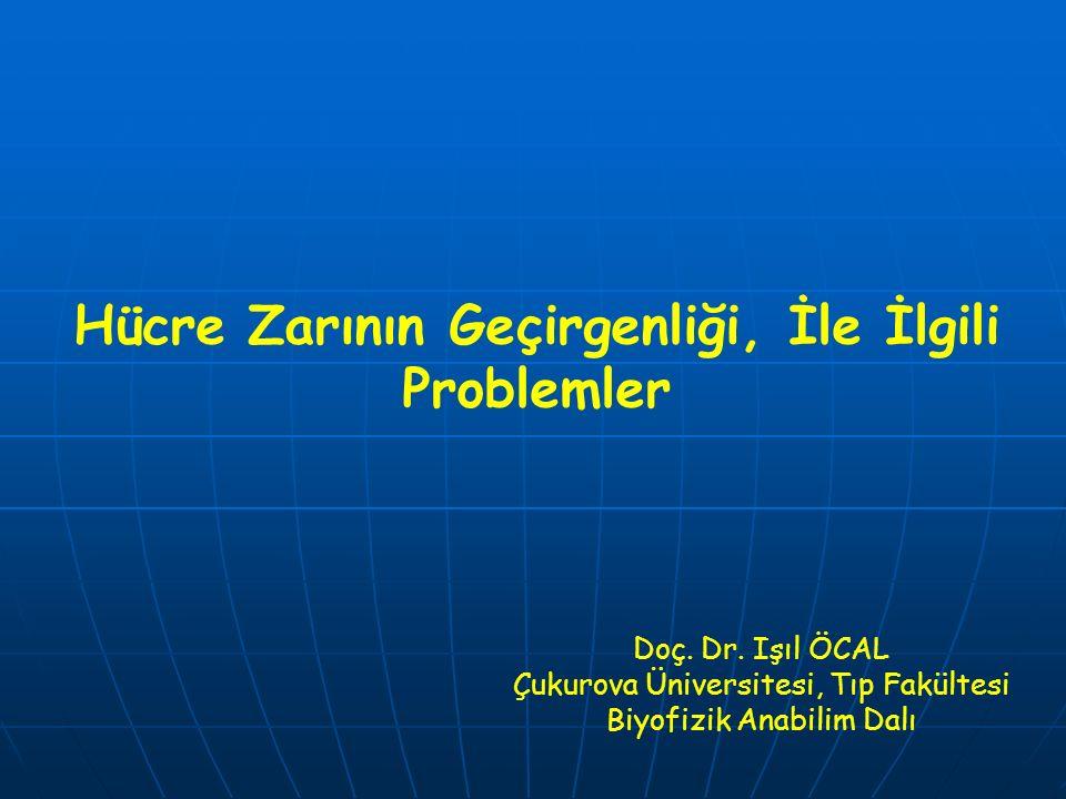 Hücre Zarının Geçirgenliği, İle İlgili Problemler Doç. Dr. Işıl ÖCAL Çukurova Üniversitesi, Tıp Fakültesi Biyofizik Anabilim Dalı