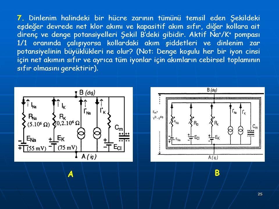 25 7. Dinlenim halindeki bir hücre zarının tümünü temsil eden Şekildeki eşdeğer devrede net klor akımı ve kapasitif akım sıfır, diğer kollara ait dire
