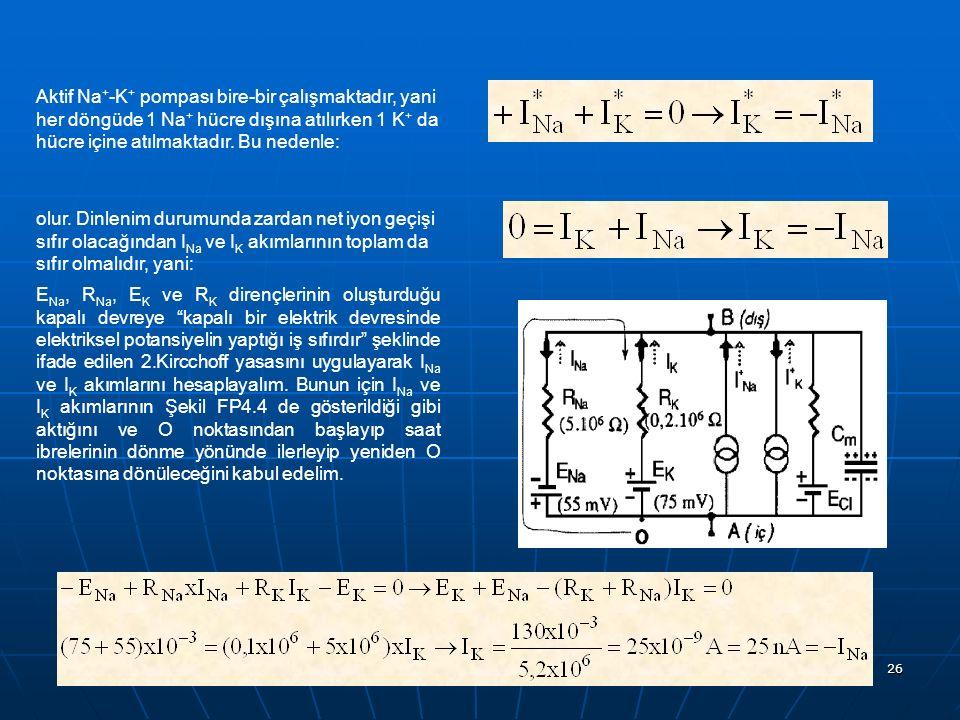 26 Aktif Na + -K + pompası bire-bir çalışmaktadır, yani her döngüde 1 Na + hücre dışına atılırken 1 K + da hücre içine atılmaktadır. Bu nedenle: olur.