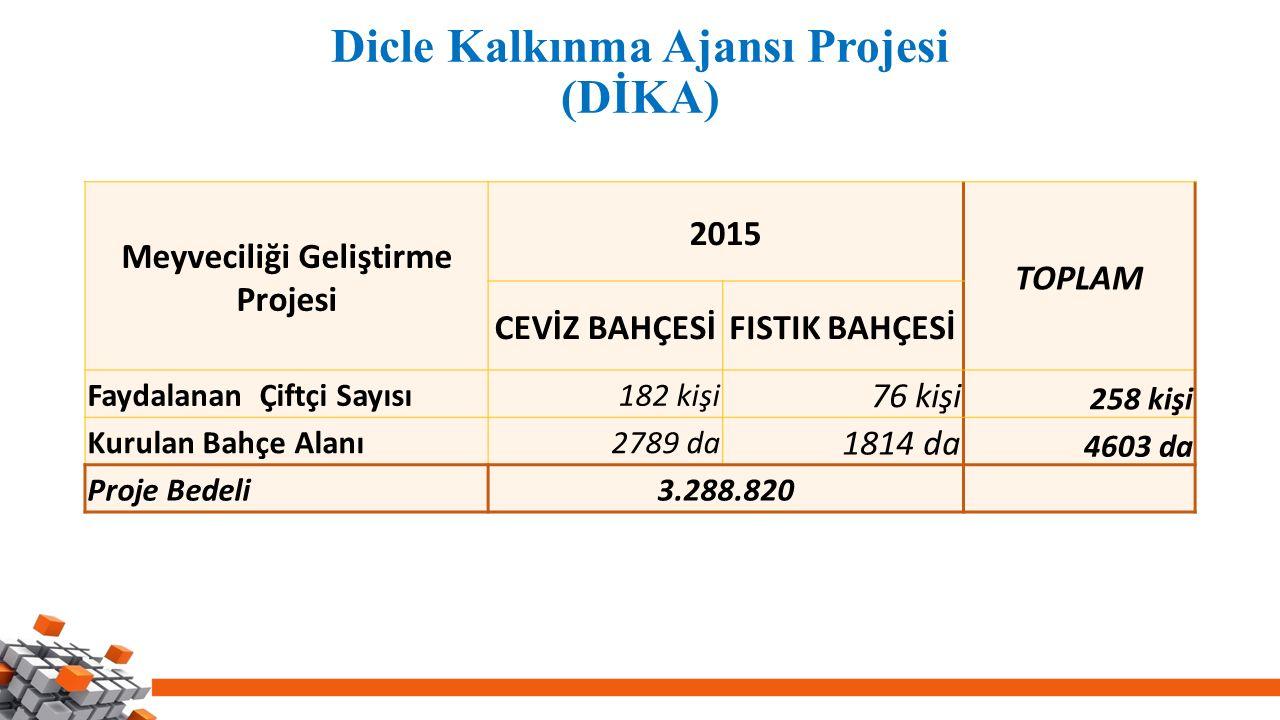 Dicle Kalkınma Ajansı Projesi (DİKA) Meyveciliği Geliştirme Projesi 2015 TOPLAM CEVİZ BAHÇESİFISTIK BAHÇESİ Faydalanan Çiftçi Sayısı182 kişi 76 kişi 258 kişi Kurulan Bahçe Alanı2789 da 1814 da 4603 da Proje Bedeli3.288.820