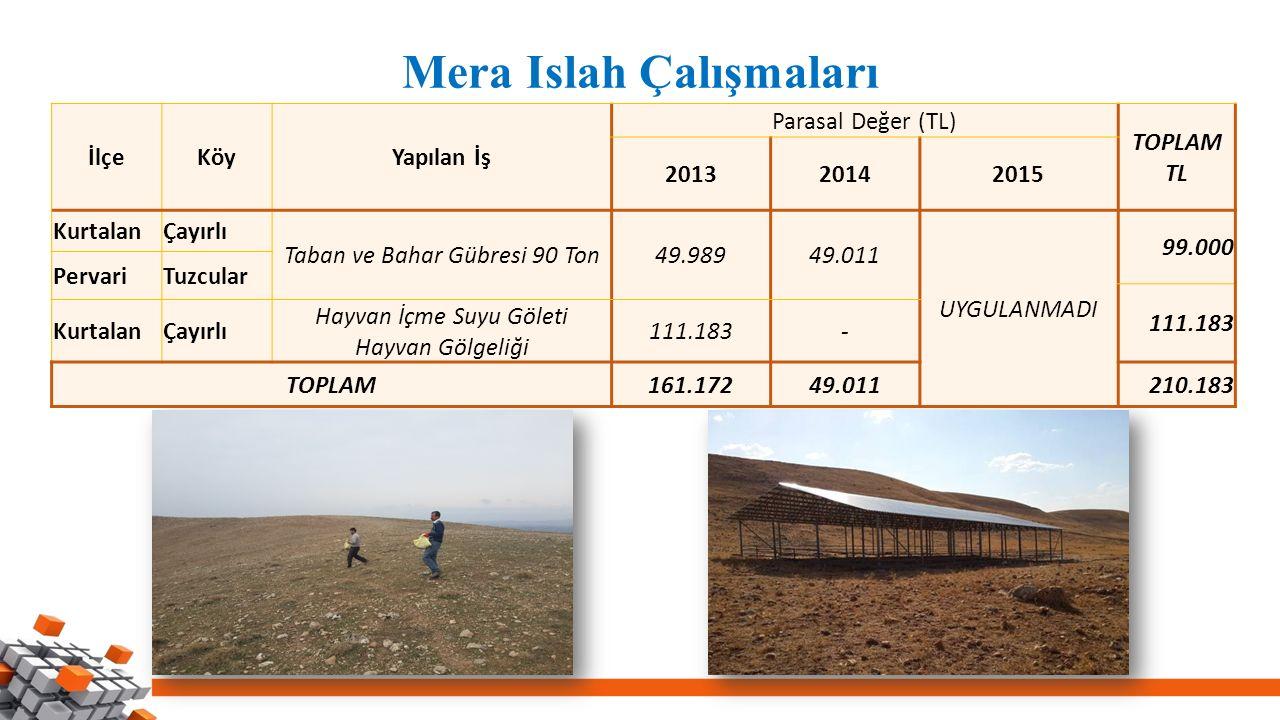 Mera Islah Çalışmaları İlçeKöyYapılan İş Parasal Değer (TL) TOPLAM TL 201320142015 KurtalanÇayırlı Taban ve Bahar Gübresi 90 Ton49.98949.011 UYGULANMA