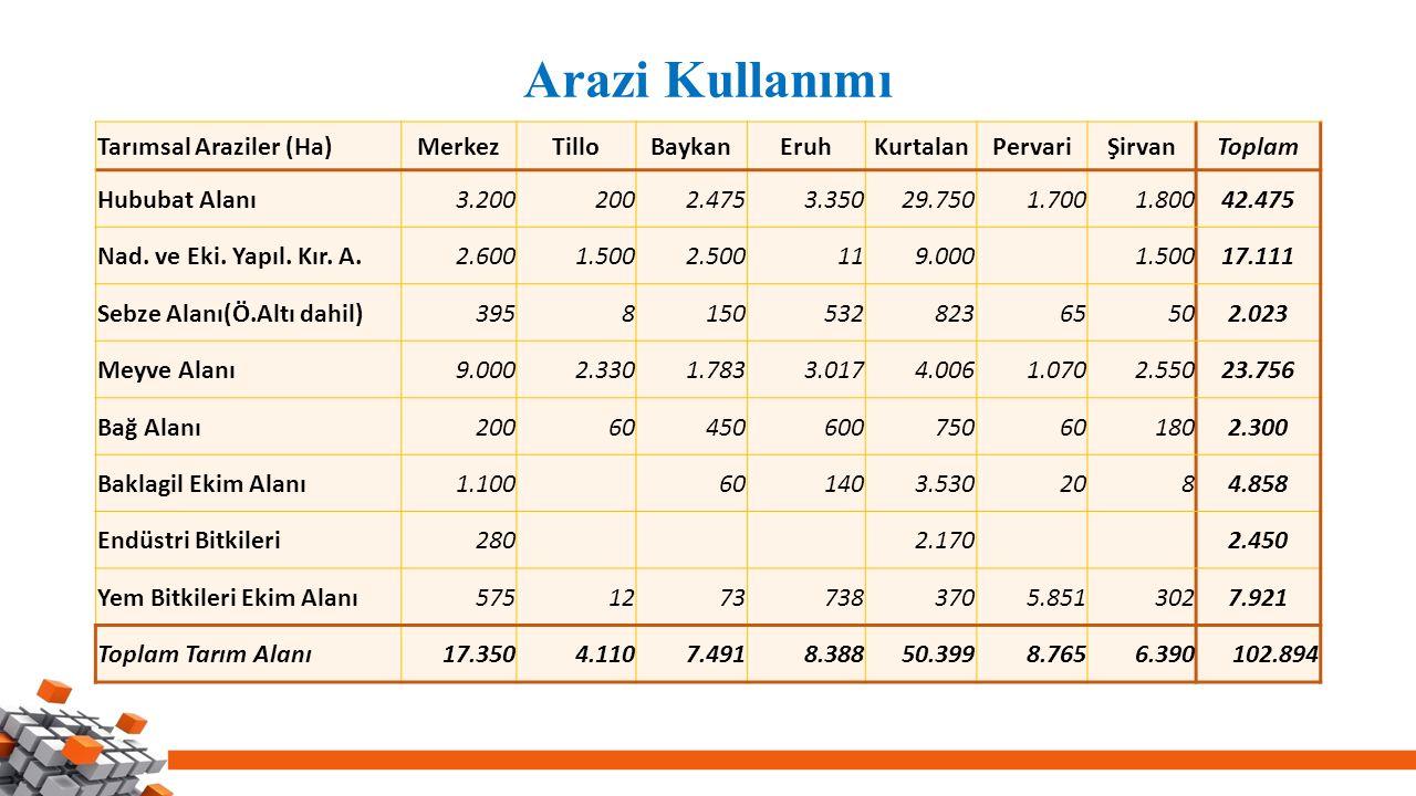 Arazi Kullanımı Tarımsal Araziler (Ha)MerkezTilloBaykanEruhKurtalanPervariŞirvanToplam Hububat Alanı3.2002002.4753.35029.7501.7001.80042.475 Nad.