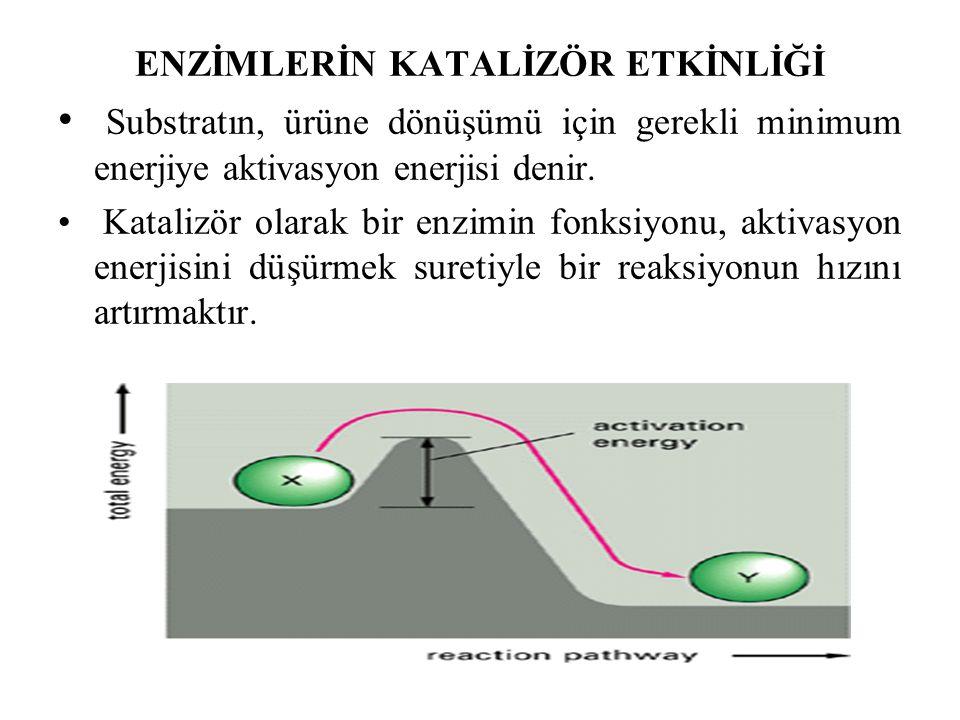 ENZİMLERİN KATALİZÖR ETKİNLİĞİ Substratın, ürüne dönüşümü için gerekli minimum enerjiye aktivasyon enerjisi denir.