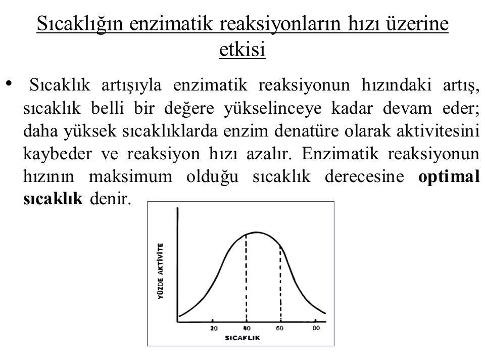 Sıcaklığın enzimatik reaksiyonların hızı üzerine etkisi Sıcaklık artışıyla enzimatik reaksiyonun hızındaki artış, sıcaklık belli bir değere yükselinceye kadar devam eder; daha yüksek sıcaklıklarda enzim denatüre olarak aktivitesini kaybeder ve reaksiyon hızı azalır.