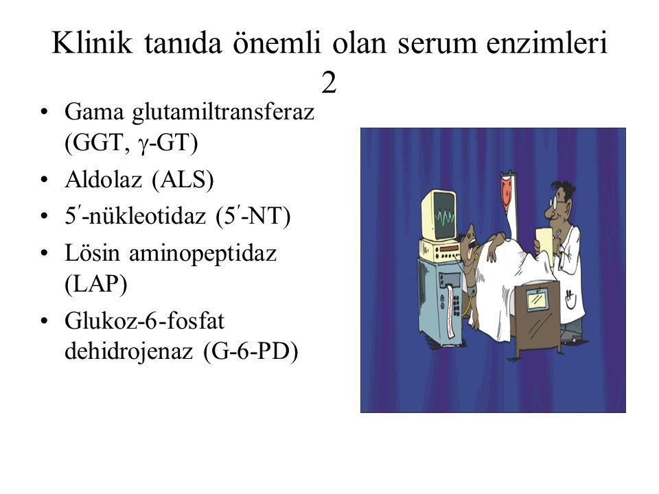 Klinik tanıda önemli olan serum enzimleri 2 Gama glutamiltransferaz (GGT,  -GT) Aldolaz (ALS) 5-nükleotidaz (5-NT) Lösin aminopeptidaz (LAP) Glukoz-6-fosfat dehidrojenaz (G-6-PD)