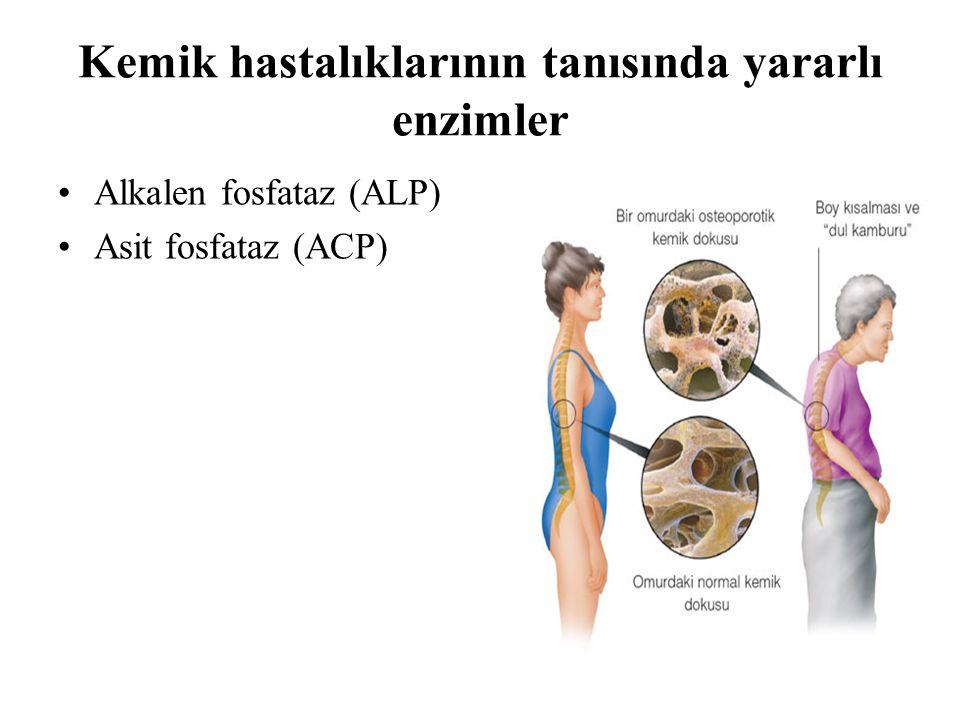 Kemik hastalıklarının tanısında yararlı enzimler Alkalen fosfataz (ALP) Asit fosfataz (ACP)