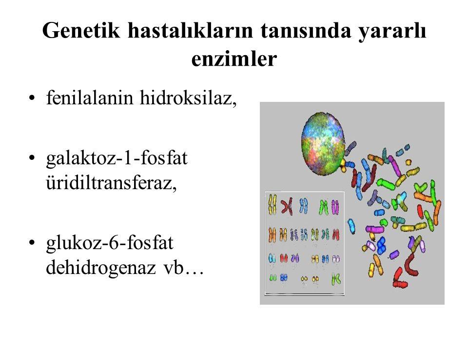Genetik hastalıkların tanısında yararlı enzimler fenilalanin hidroksilaz, galaktoz-1-fosfat üridiltransferaz, glukoz-6-fosfat dehidrogenaz vb…