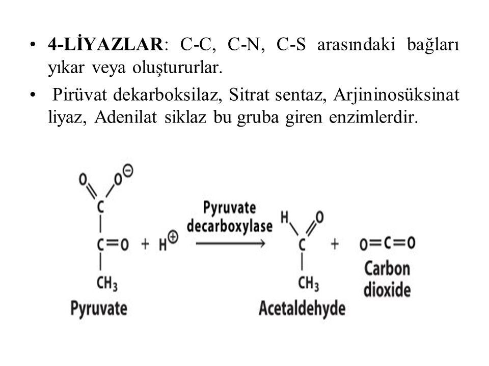 4-LİYAZLAR: C-C, C-N, C-S arasındaki bağları yıkar veya oluştururlar.