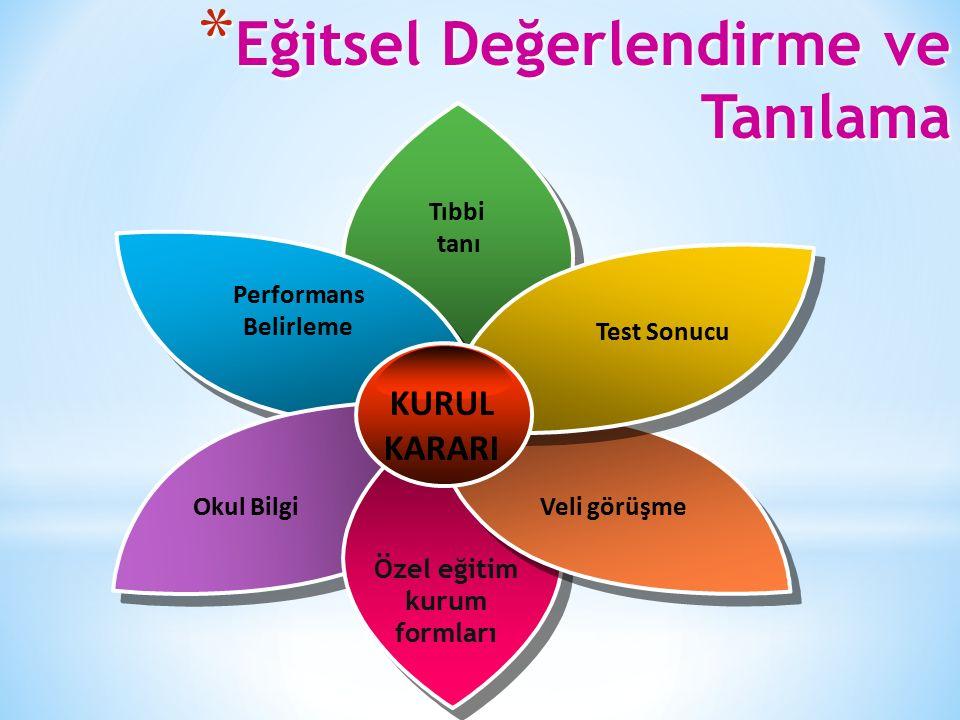 * Eğitsel Değerlendirme ve Tanılama Performans Belirleme Tıbbi tanı Test Sonucu Veli görüşmeOkul Bilgi Özel eğitim kurum formları KURUL KARARI