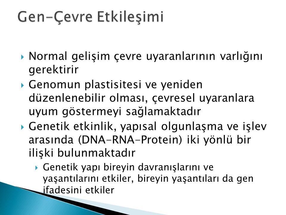  Normal gelişim çevre uyaranlarının varlığını gerektirir  Genomun plastisitesi ve yeniden düzenlenebilir olması, çevresel uyaranlara uyum göstermeyi sağlamaktadır  Genetik etkinlik, yapısal olgunlaşma ve işlev arasında (DNA-RNA-Protein) iki yönlü bir ilişki bulunmaktadır  Genetik yapı bireyin davranışlarını ve yaşantılarını etkiler, bireyin yaşantıları da gen ifadesini etkiler