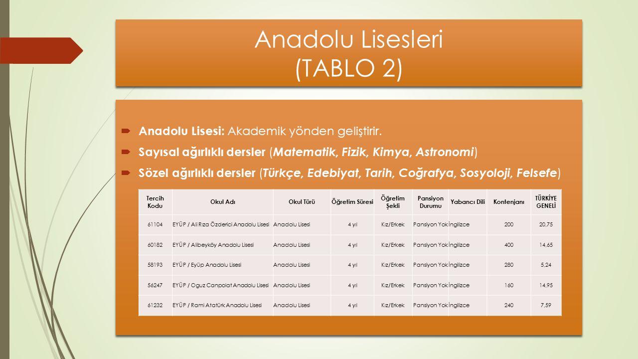 Anadolu Lisesleri (TABLO 2)  Anadolu Lisesi: Akademik yönden geliştirir.