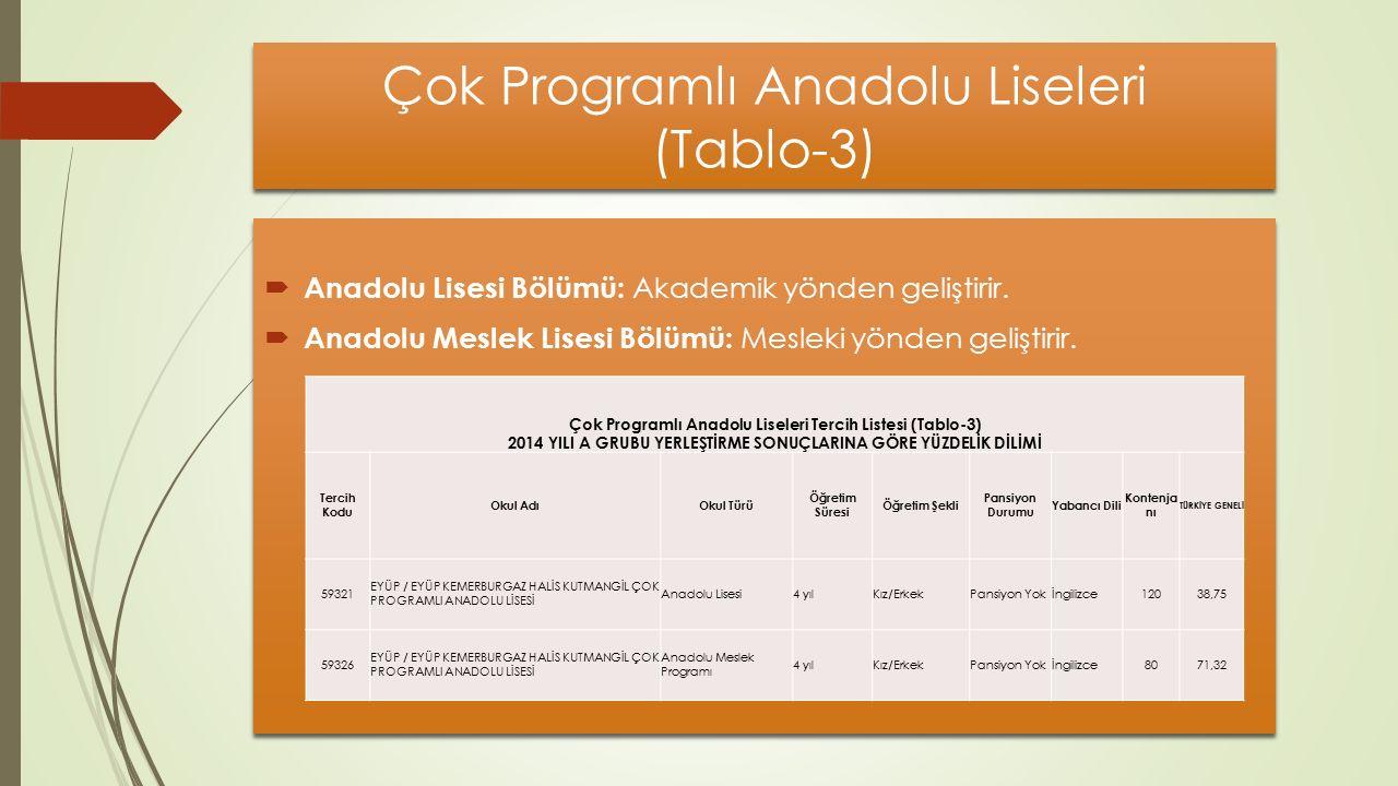 Çok Programlı Anadolu Liseleri (Tablo-3)  Anadolu Lisesi Bölümü: Akademik yönden geliştirir.