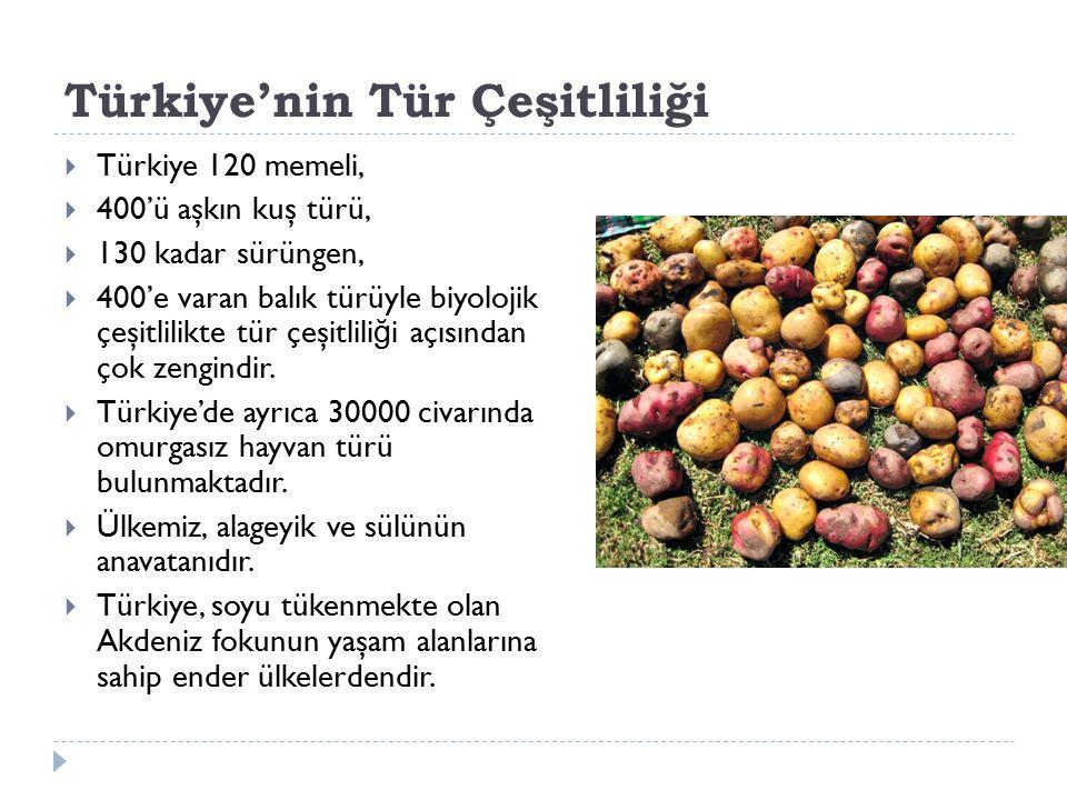 Türkiye'nin Tür Çeşitliliği  Türkiye 120 memeli,  400'ü aşkın kuş türü,  130 kadar sürüngen,  400'e varan balık türüyle biyolojik çeşitlilikte tür