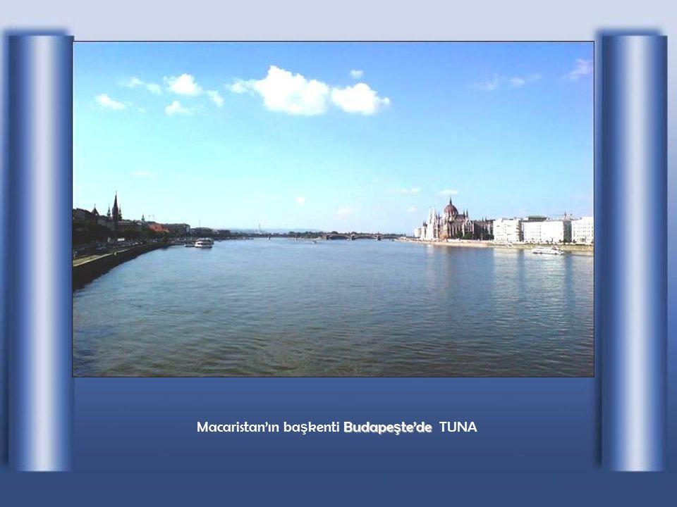 SLOVAKYA' nın ba ş kenti B BB Bratislava'da TUNA