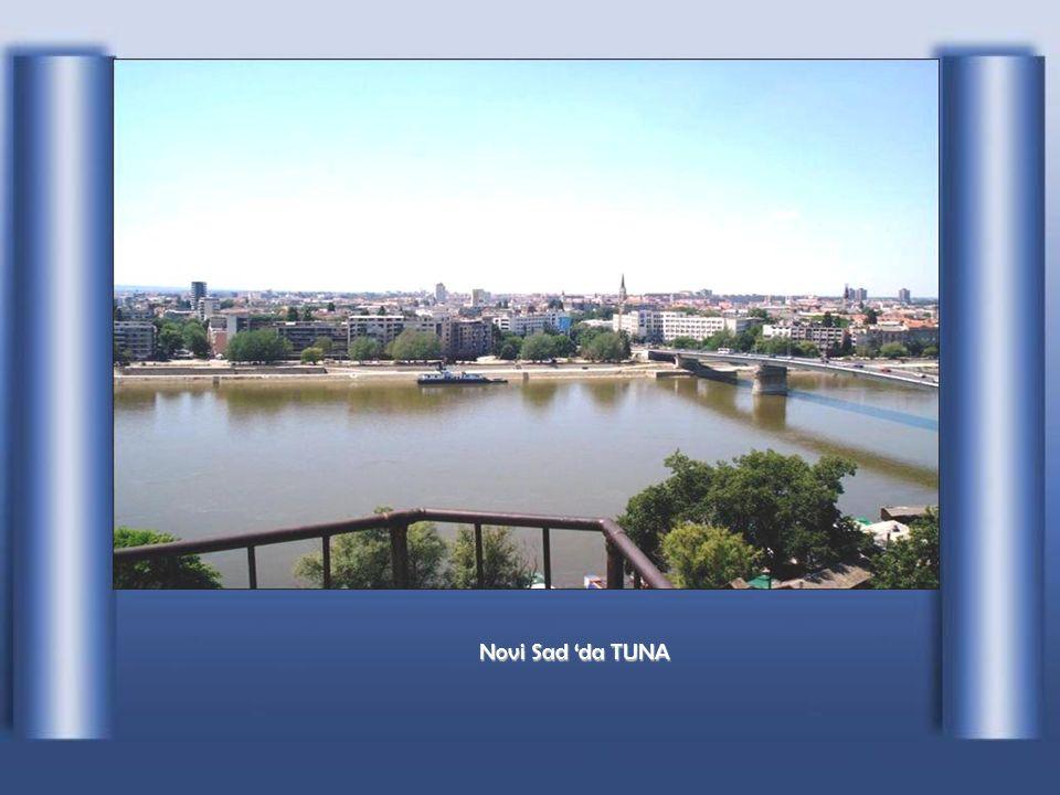 Vukovar' da TUNA
