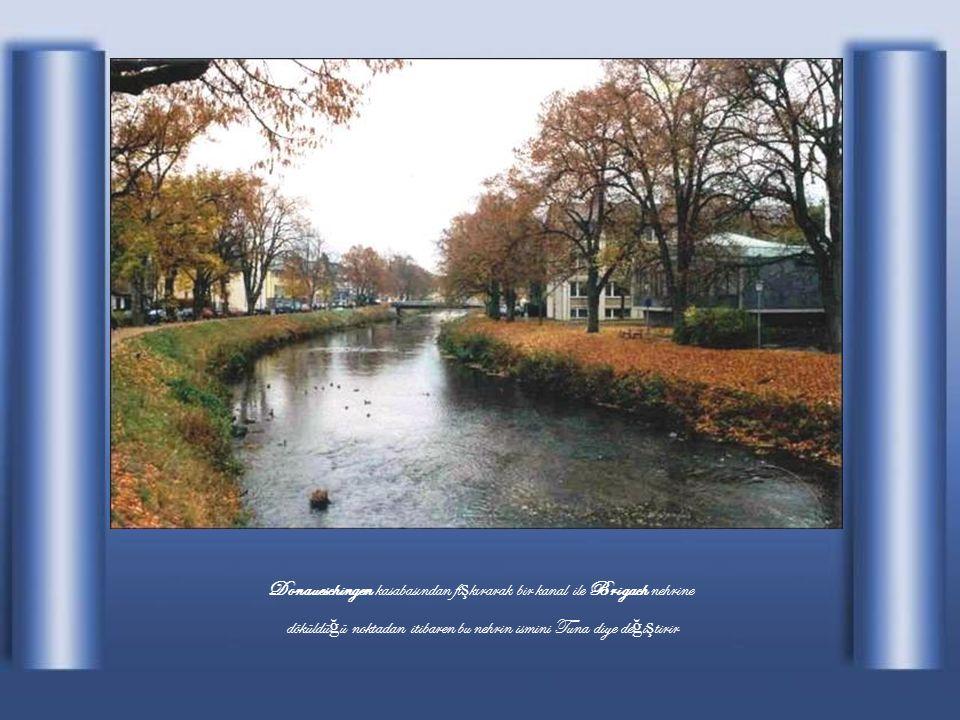 Almanya nın güneyinde Karaorman bölgesinde Brege ve Brigach da ğ ırmaklarının 678 m yükseklikteki Donau-Eschingen de birle ş mesiyle meydana gelir.