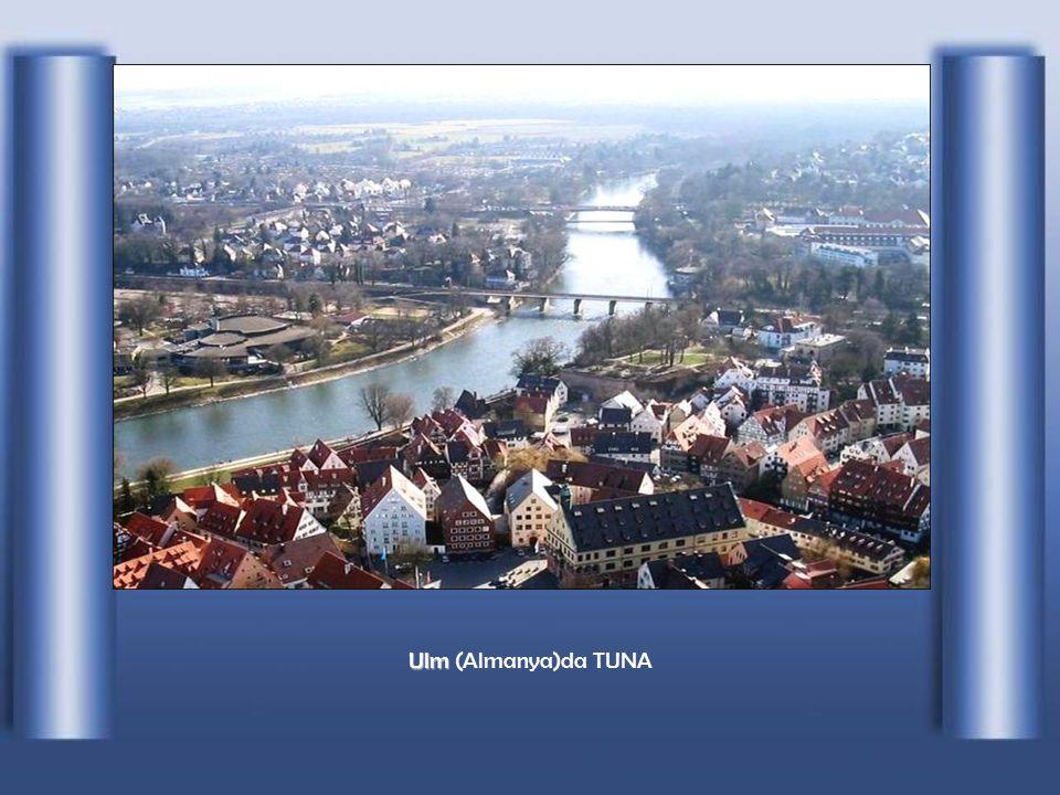Donaueschingen kasabasından fı ş kırarak bir kanal ile Brigach nehrine döküldü ğ ü noktadan itibaren bu nehrin ismini Tuna diye de ğ i ş tirir