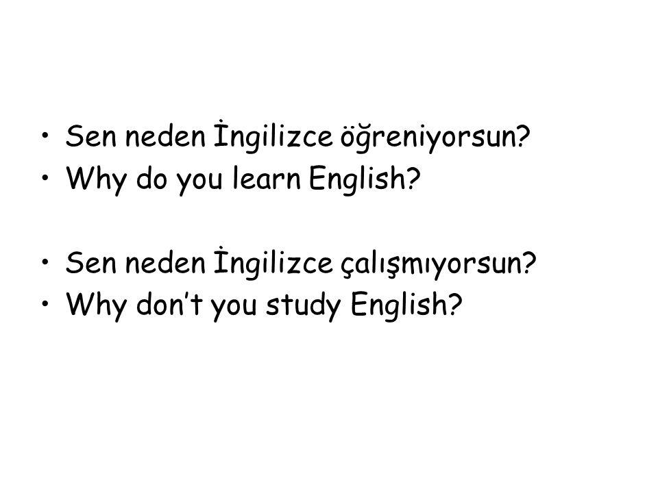 Sen neden İngilizce öğreniyorsun? Why do you learn English? Sen neden İngilizce çalışmıyorsun? Why don't you study English?