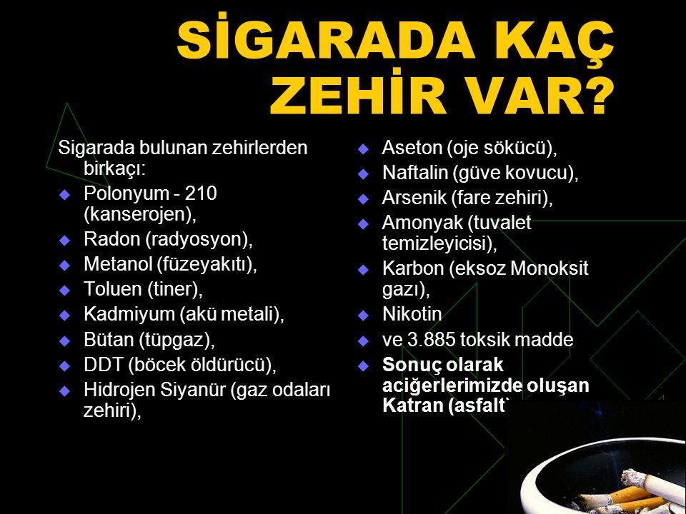 SİGARADA KAÇ ZEHİR VAR.