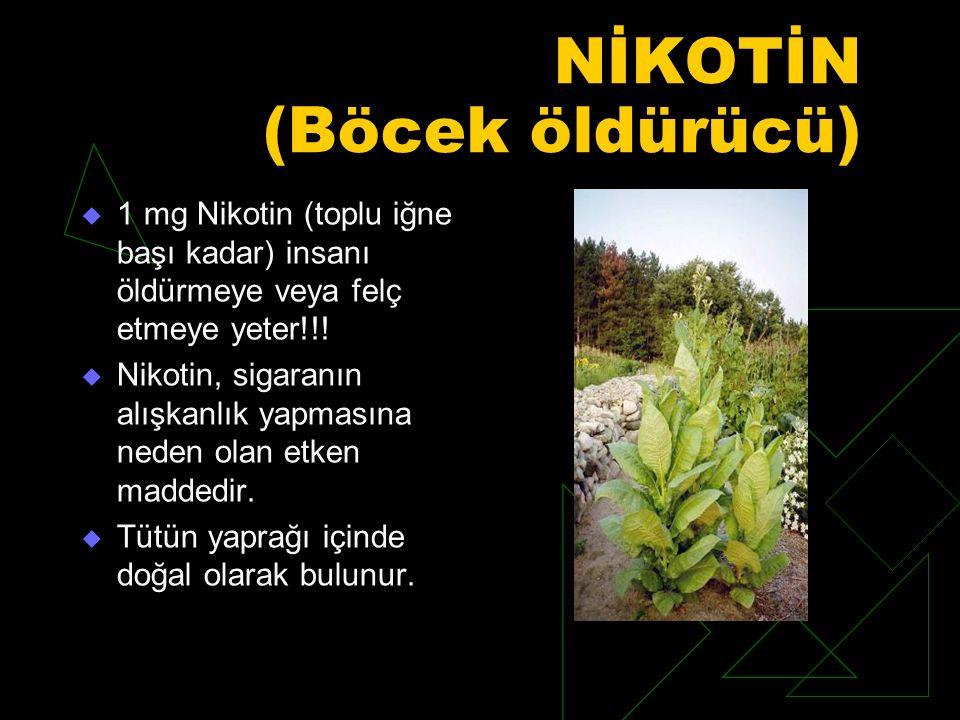 NİKOTİN (Böcek öldürücü)  1 mg Nikotin (toplu iğne başı kadar) insanı öldürmeye veya felç etmeye yeter!!.