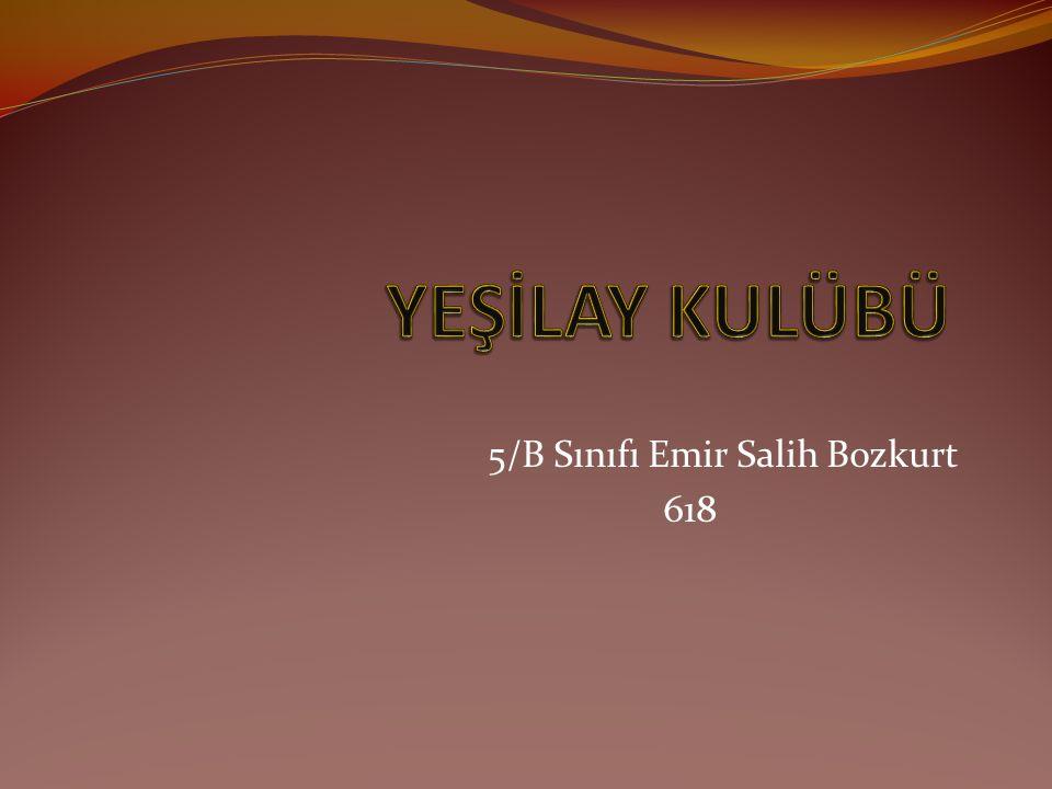 5/B Sınıfı Emir Salih Bozkurt 618