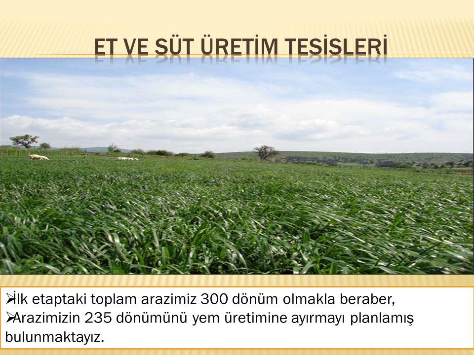  İlk etaptaki toplam arazimiz 300 dönüm olmakla beraber,  Arazimizin 235 dönümünü yem üretimine ayırmayı planlamış bulunmaktayız.