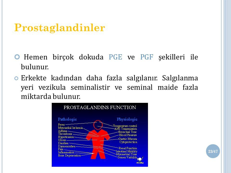 Prostaglandinler Hemen birçok dokuda PGE ve PGF şekilleri ile bulunur.