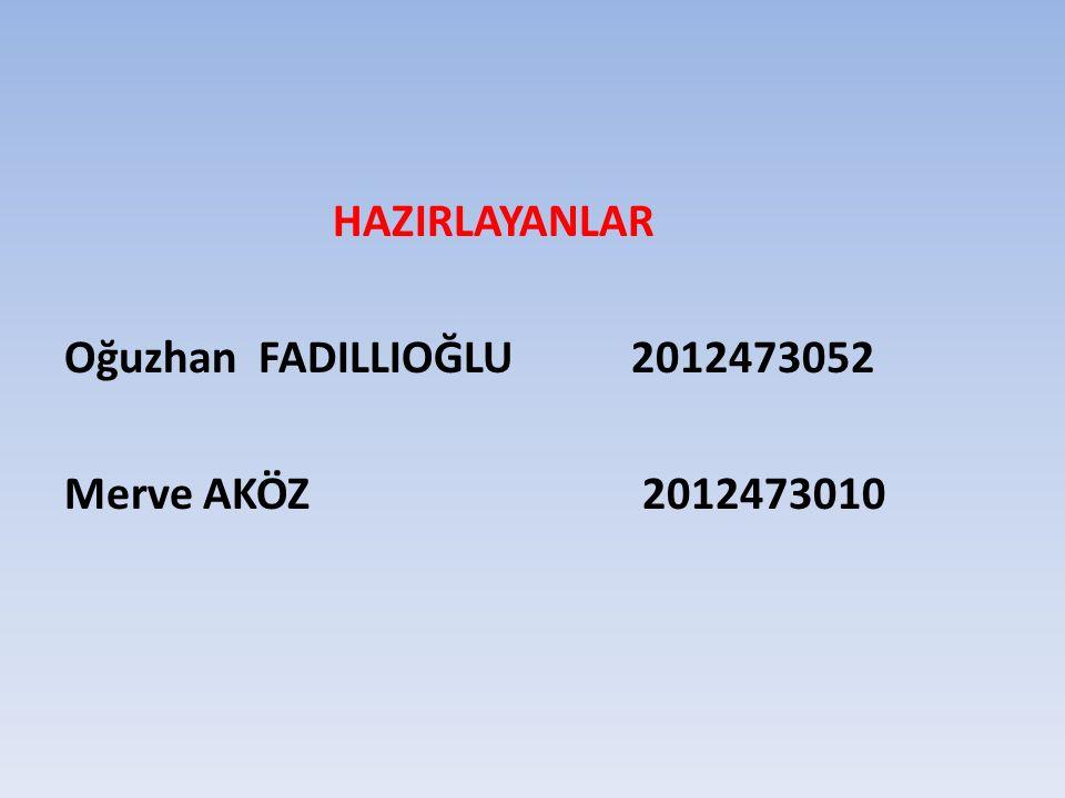 HAZIRLAYANLAR Oğuzhan FADILLIOĞLU 2012473052 Merve AKÖZ 2012473010