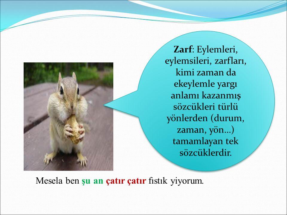 Zarf: Eylemleri, eylemsileri, zarfları, kimi zaman da ekeylemle yargı anlamı kazanmış sözcükleri türlü yönlerden (durum, zaman, yön…) tamamlayan tek sözcüklerdir.
