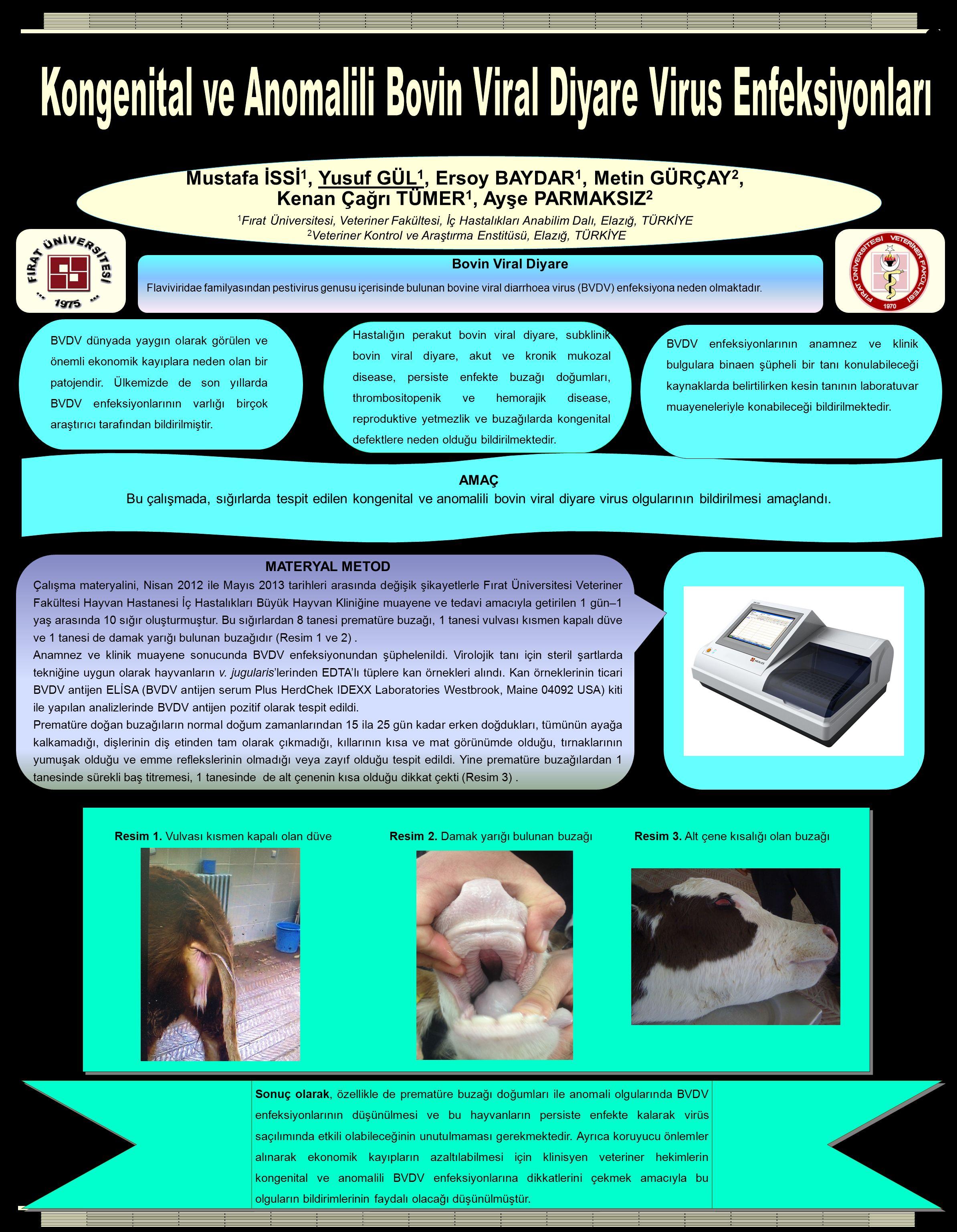 Materyal Metod MATERYAL METOD Çalışma materyalini, Nisan 2012 ile Mayıs 2013 tarihleri arasında değişik şikayetlerle Fırat Üniversitesi Veteriner Fakü
