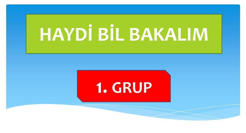 HAYDİ BİL BAKALIM 1. GRUP