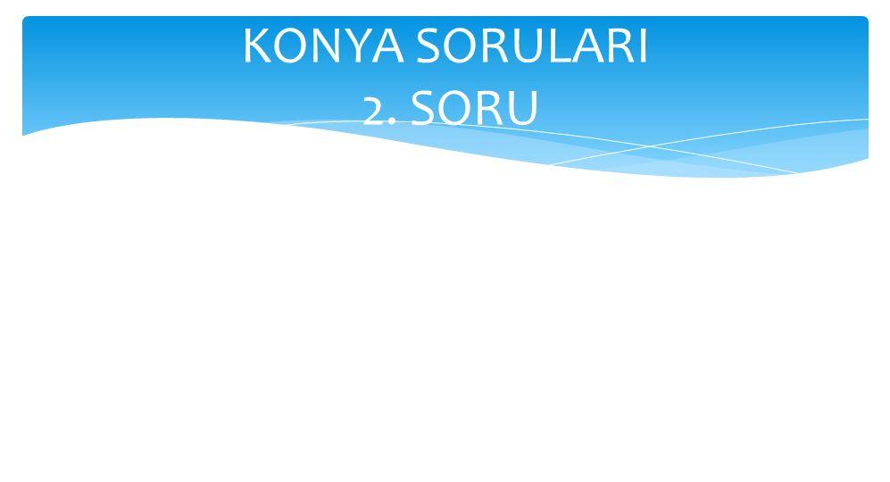 KONYA SORULARI 2. SORU