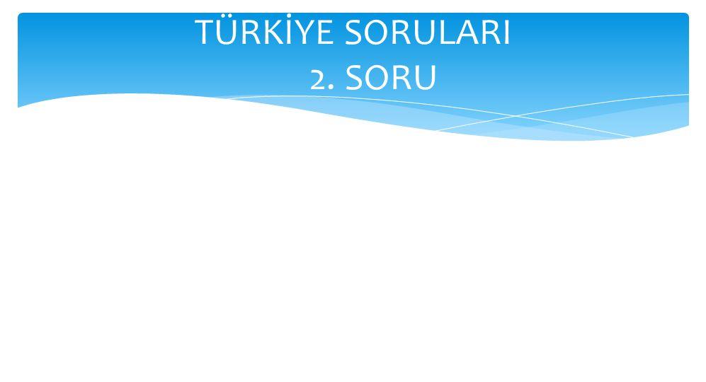 TÜRKİYE SORULARI 2. SORU