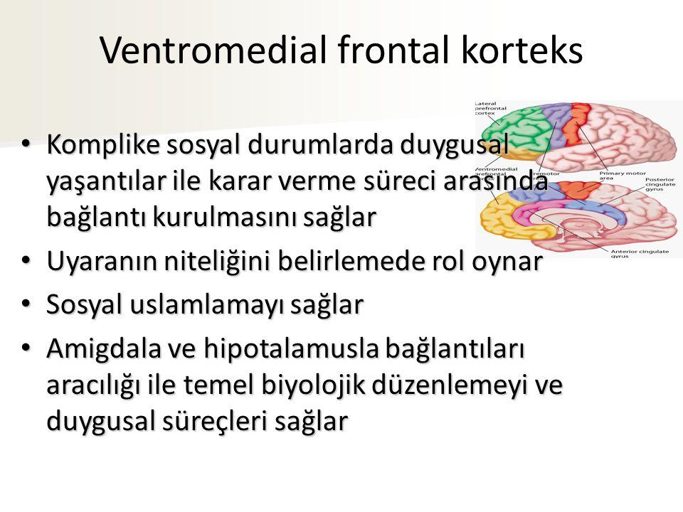 Ventromedial frontal korteks Komplike sosyal durumlarda duygusal yaşantılar ile karar verme süreci arasında bağlantı kurulmasını sağlar Komplike sosyal durumlarda duygusal yaşantılar ile karar verme süreci arasında bağlantı kurulmasını sağlar Uyaranın niteliğini belirlemede rol oynar Uyaranın niteliğini belirlemede rol oynar Sosyal uslamlamayı sağlar Sosyal uslamlamayı sağlar Amigdala ve hipotalamusla bağlantıları aracılığı ile temel biyolojik düzenlemeyi ve duygusal süreçleri sağlar Amigdala ve hipotalamusla bağlantıları aracılığı ile temel biyolojik düzenlemeyi ve duygusal süreçleri sağlar