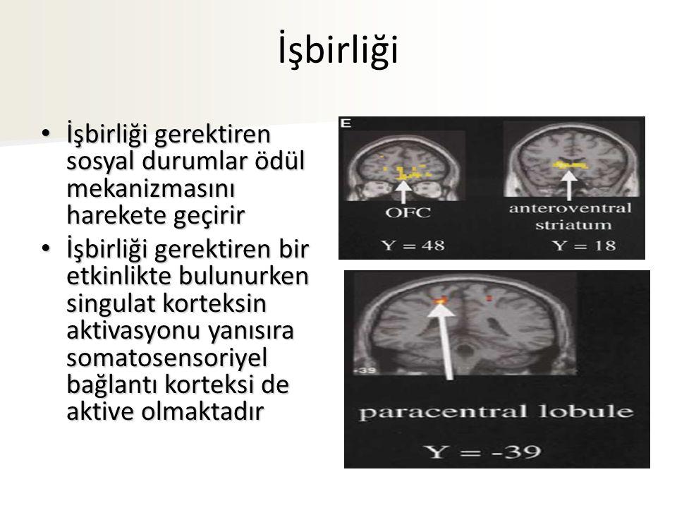 İşbirliği İşbirliği gerektiren sosyal durumlar ödül mekanizmasını harekete geçirir İşbirliği gerektiren sosyal durumlar ödül mekanizmasını harekete geçirir İşbirliği gerektiren bir etkinlikte bulunurken singulat korteksin aktivasyonu yanısıra somatosensoriyel bağlantı korteksi de aktive olmaktadır İşbirliği gerektiren bir etkinlikte bulunurken singulat korteksin aktivasyonu yanısıra somatosensoriyel bağlantı korteksi de aktive olmaktadır