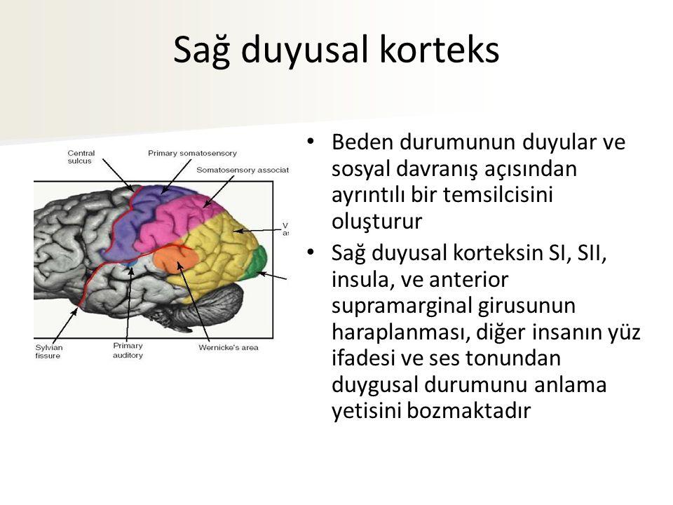 Sağ duyusal korteks Beden durumunun duyular ve sosyal davranış açısından ayrıntılı bir temsilcisini oluşturur Sağ duyusal korteksin SI, SII, insula, ve anterior supramarginal girusunun haraplanması, diğer insanın yüz ifadesi ve ses tonundan duygusal durumunu anlama yetisini bozmaktadır